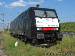 S1800 + A590