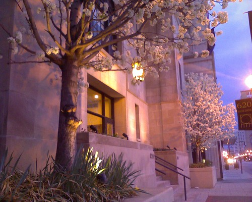architecture sunrise spring louisville