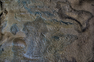 Stromatolite, Blue Spring Cave, White Co, TN