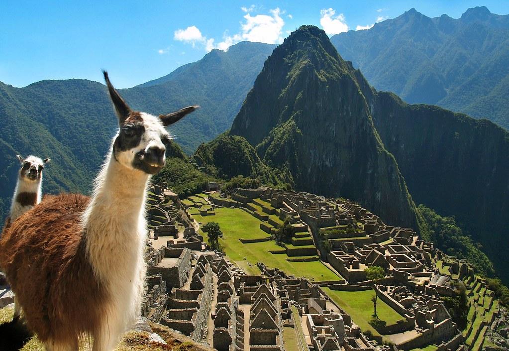 The Locals of Machu Picchu