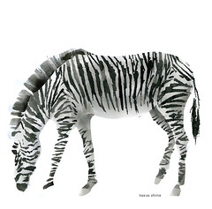 animal(1.0), animal figure(1.0), zebra(1.0), mammal(1.0),