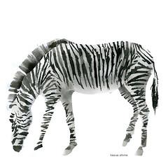 animal, animal figure, zebra, mammal,