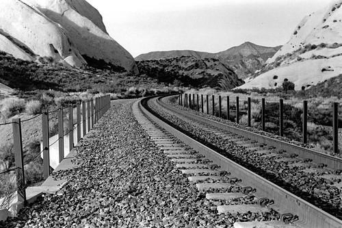 Tracks at the Mormon Rocks