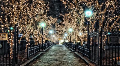 longexposure chicago night lights