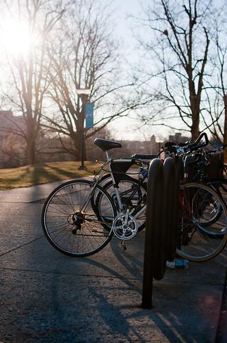 Bike in Spring