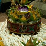 Conch Shells for Evening Puja - Kuala Lumpur, Malaysia