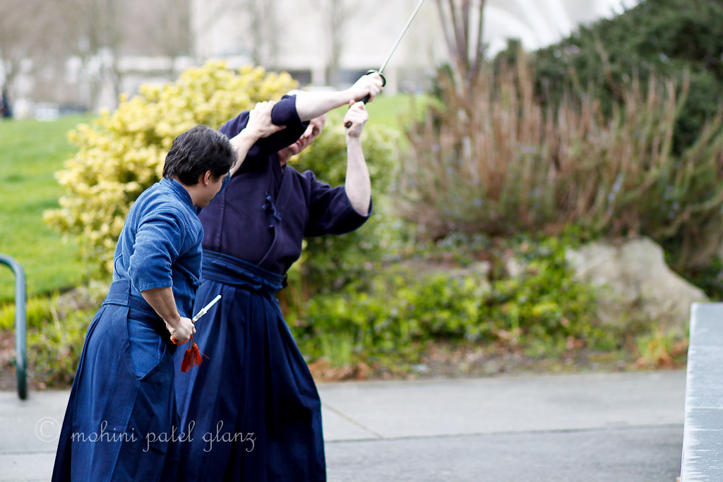 classical bujutsu by shinto-kan