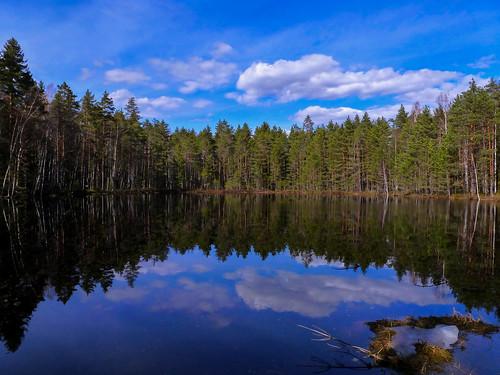 finland symmetry nuuksio