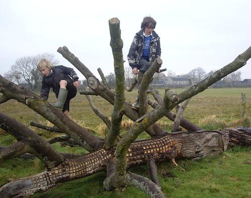 Play Tree