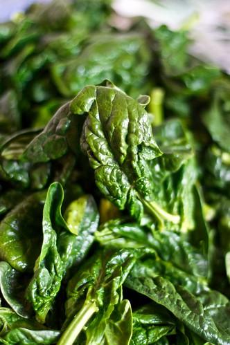 Come cucinare gli spinaci mele al forno for Cucinare spinaci