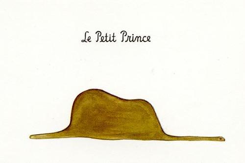 PetitPrince 01