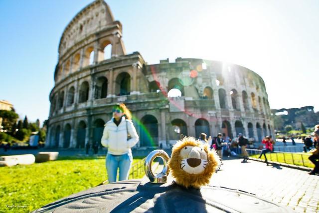 小獅與羅馬競技場