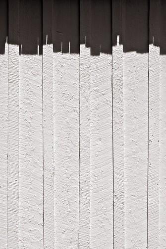 park shadow texture nikon florida south historic 60mm nikkor micronikkor sociallandscape