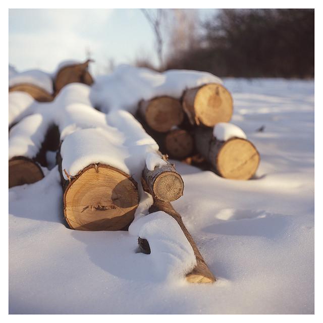Log Stock