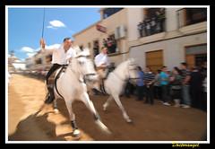 Arroyo de la Luz. dia de la Luz