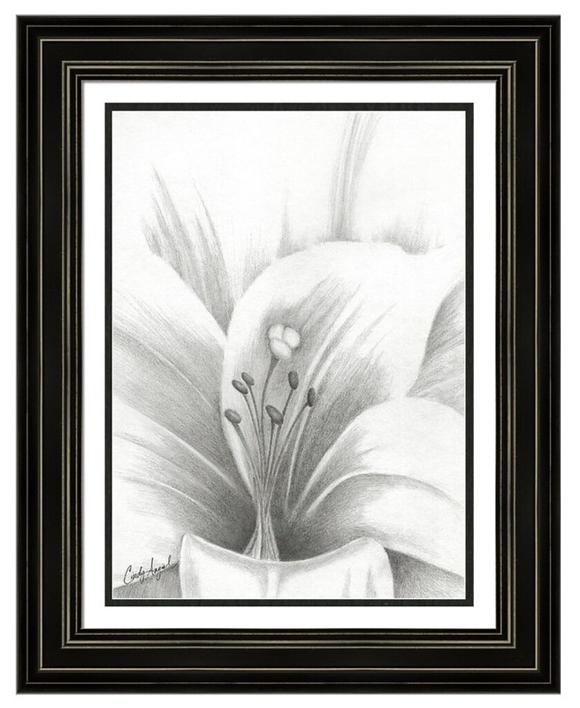 Easter Lilly accomplished in Graphite - by Cindy Angiel