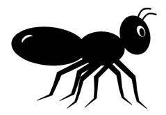 Black ant clip art, cute style lge 11cm long