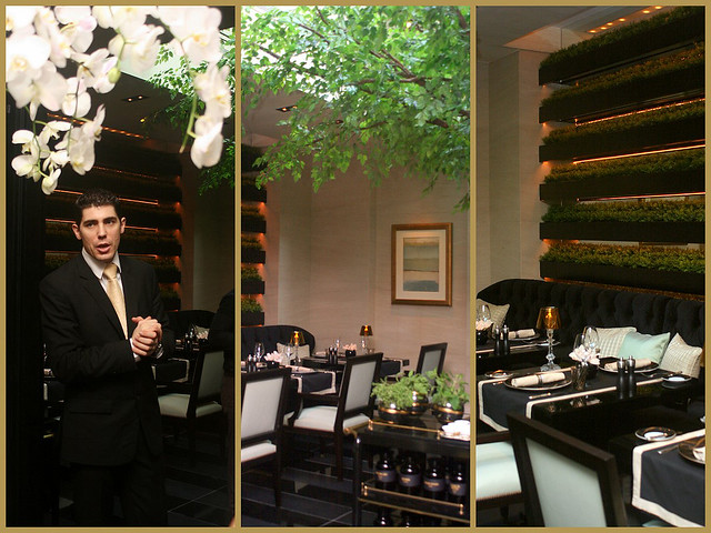 Joël Robuchon Restaurant has The Winter Garden, which houses a tree in the centre of a sunlit room