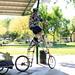 I Bike by prantik bhattacharyya