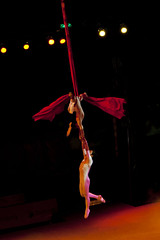 circus(0.0), event(1.0), performing arts(1.0), aerialist(1.0), musical theatre(1.0), entertainment(1.0), performance(1.0), acrobatics(1.0), performance art(1.0),