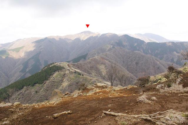 20110429_塔ノ岳(表尾根)_0020