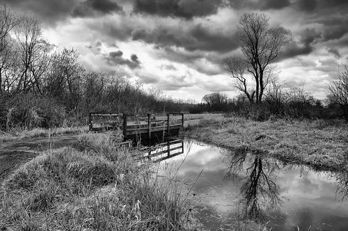 park bridge sky bw tree water grass clouds creek washington stream threatening redmond troubled marymoorpark
