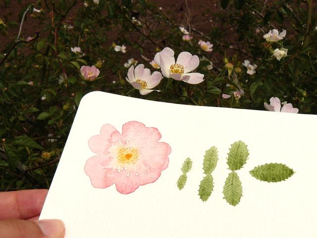 flower inspired