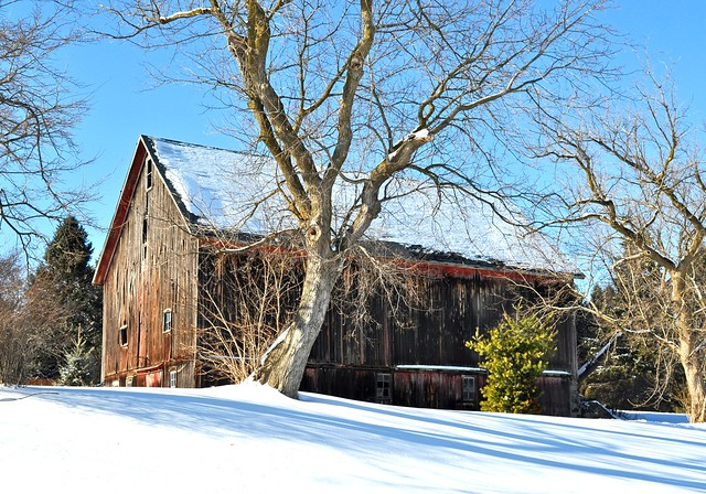 Old Barn  Oakland County MI