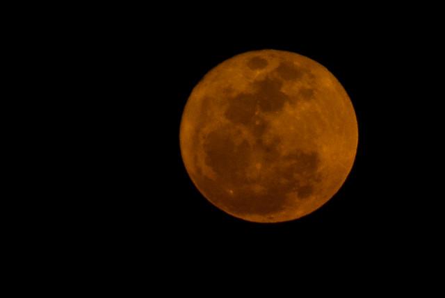 78/365 Super Moon