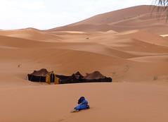 plateau(0.0), wadi(0.0), erg(1.0), sand(1.0), aeolian landform(1.0), natural environment(1.0), desert(1.0), dune(1.0), landscape(1.0), sahara(1.0), singing sand(1.0),