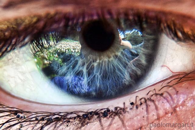 Danish eye