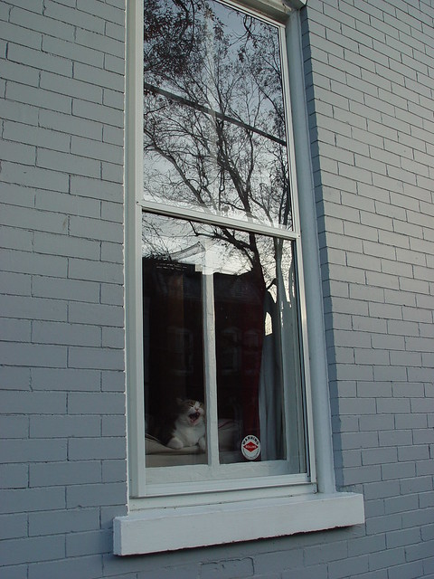A storm window commitment old town home for Storm windows
