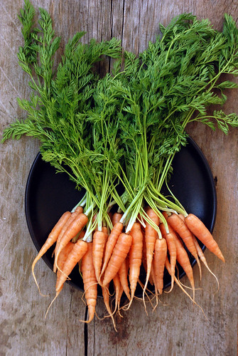 One bunch of carrots