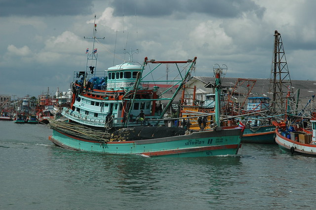 Boggart abroad 12 13 15 for Purse seine fishing