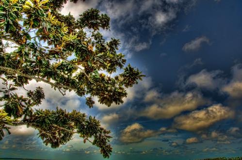 clouds landscape gulfcoast 2011 d7000 nikond7000