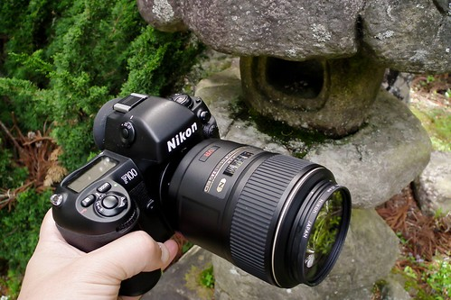 2011 Nikon F100 with AF-S VR Micro-Nikkor ED 105mm F2.8G for Sugimoto ebine-no-sato