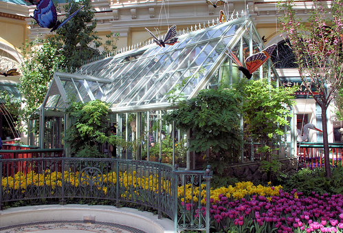 Conservatory @ Bellagio - 62