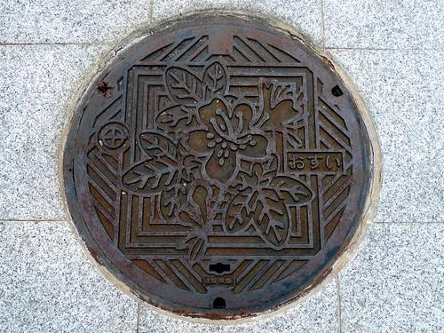 Kyotanabe Kyoto manhole cover 2(京都府京田辺市のマンホール2)