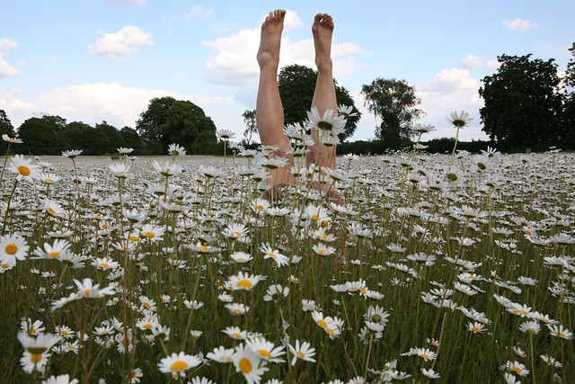 Handstands and Boomps-a-Daisy