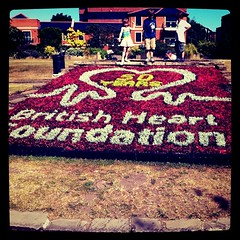 British Heart Foundation 50th anniversary floral tribute