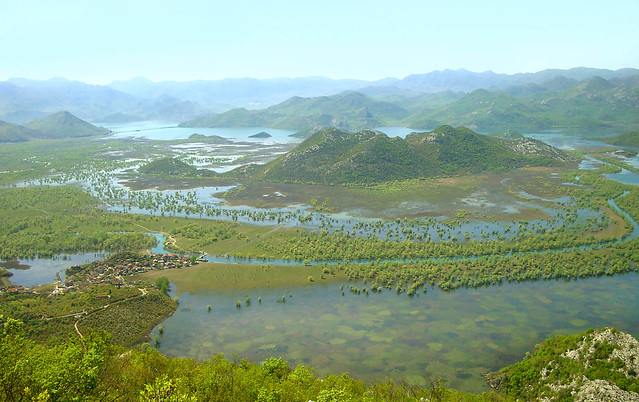 skadar lake- magic montenegro