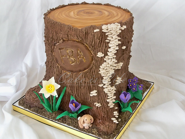 Spring Tree Stump Cake 04 2011 I Made This Cake For A