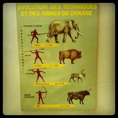 #infographie Evolution des techniques et des armes de chasse