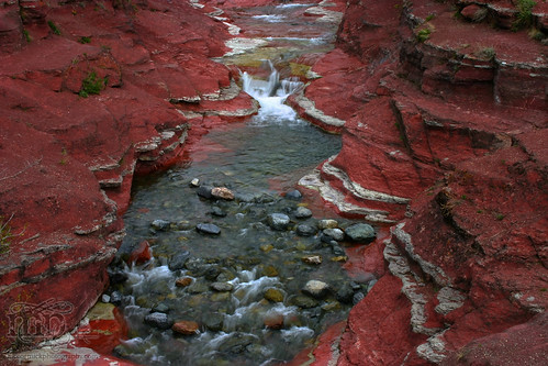 Red Rock Canyon: A river runs through it [3 of 5]