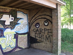 Edgbaston Reservoir - hut with graffiti - Carpe Diem