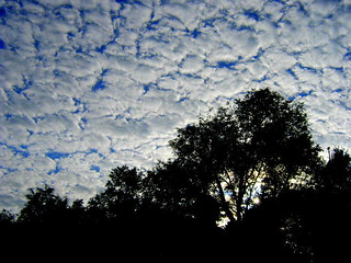 """Mackerel"" Sky?"
