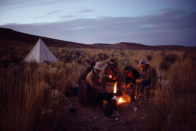 Cow Camp at Dawn, Nevada, 1979, by William Albert Allard