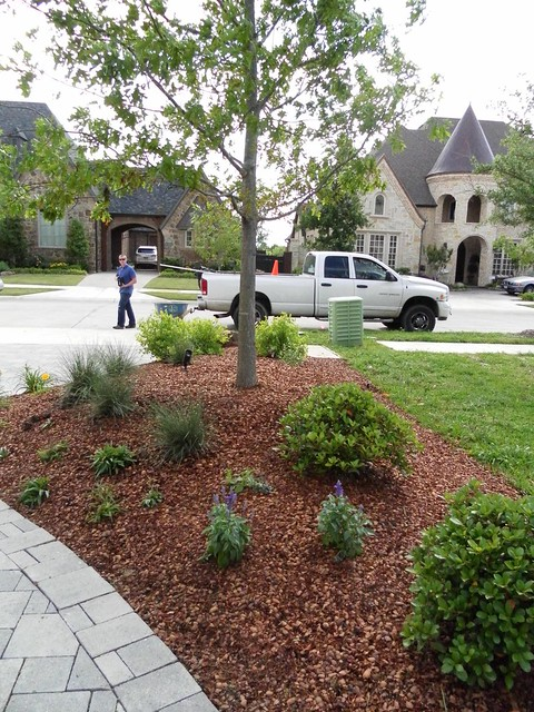 Landscape design dallas tx flickr photo sharing for Garden design landscaping dallas tx
