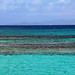 with the caribbean blues... by Zé Eduardo...