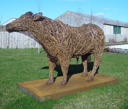 Wetherby ... willow bull.